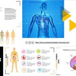 Free Anatomy PowerPoint Templates
