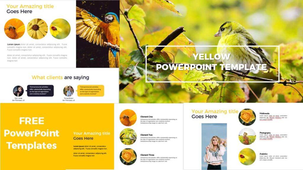 Simple slides presentation in powerpoint